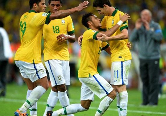 البرازيل 2014