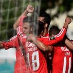 """فيديو : بنفيكا يفوز بالكأس حساب ريو أفى """" كوكا"""""""