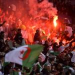 توقف مباراة بلجيكا وتونس يؤخر سفر منتخب الجزائر الى البرازيل