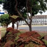 بالصور..طوارئ في البرازيل لانهاء الاستادات