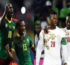الكاميرون السنغال
