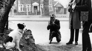 حكاوي المونديال في رمضان (3) الكلب بيكلز الذي أعاد الكأس المسروقة !